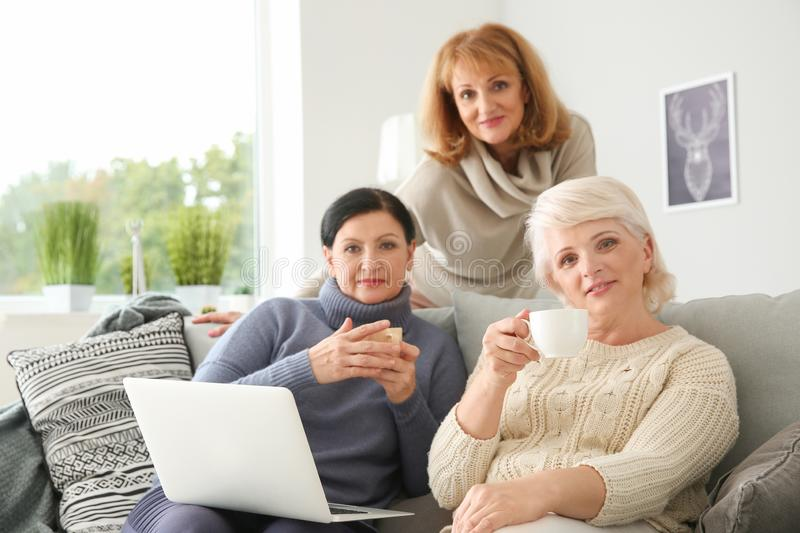 Beautiful mature women drinking coffee while using laptop at home stock photography