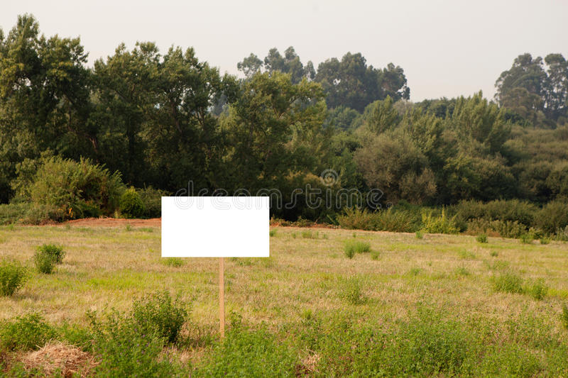 Beautiful meadow with a blank cartel stock photos