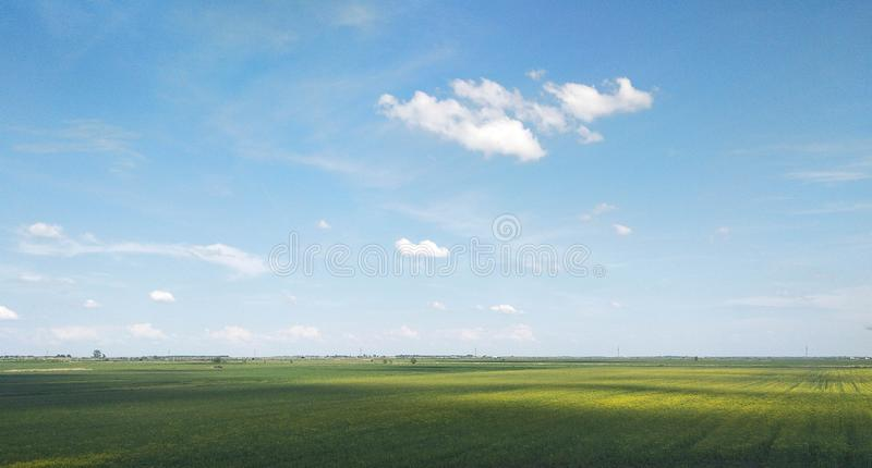 Beautiful meadow! I wish all of them were like that!. Landscape, wallpaper, longago, sun, its stock images