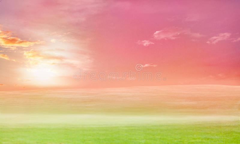 Beautiful meadow landscape with pink sky royalty free stock images