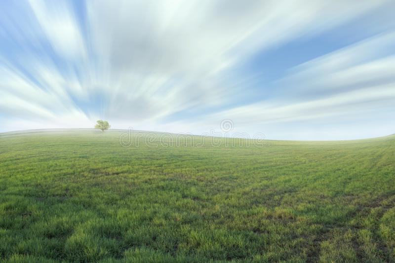 Beautiful meadow and sky-color effect stock images