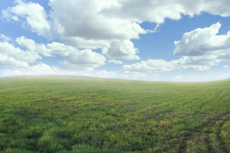 Beautiful meadow and sky-color effect stock photo