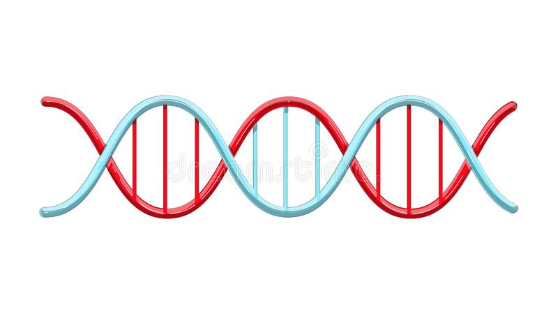 Beautiful medical red and blue scientific twisted helix structure abstract model of dna genes on a white background. Vector stock illustration