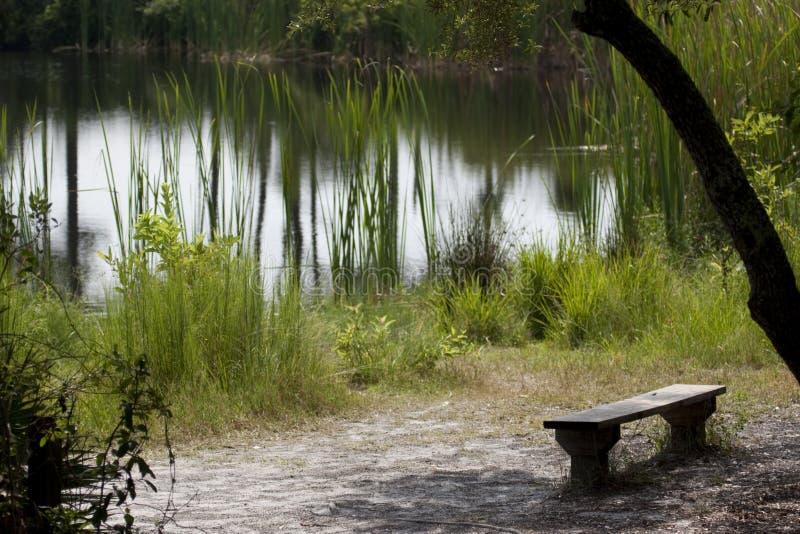 Beautiful meditative spot royalty free stock photo