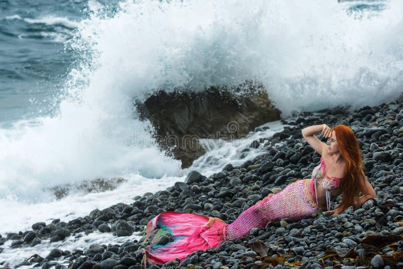 Beautiful mermaid on sea shore royalty free stock image