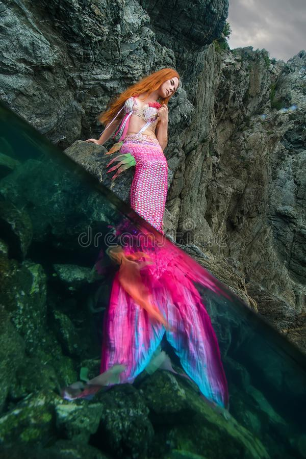 Beautiful mermaid on sea shore stock images