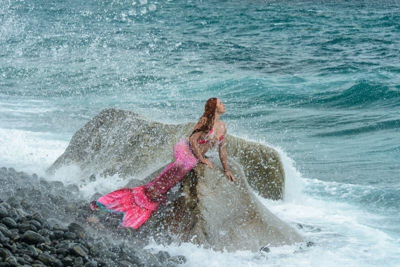 Beautiful mermaid on sea shore royalty free stock photography