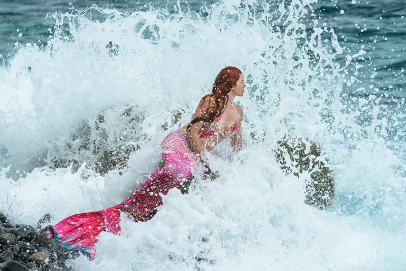 Beautiful mermaid on sea shore stock photography