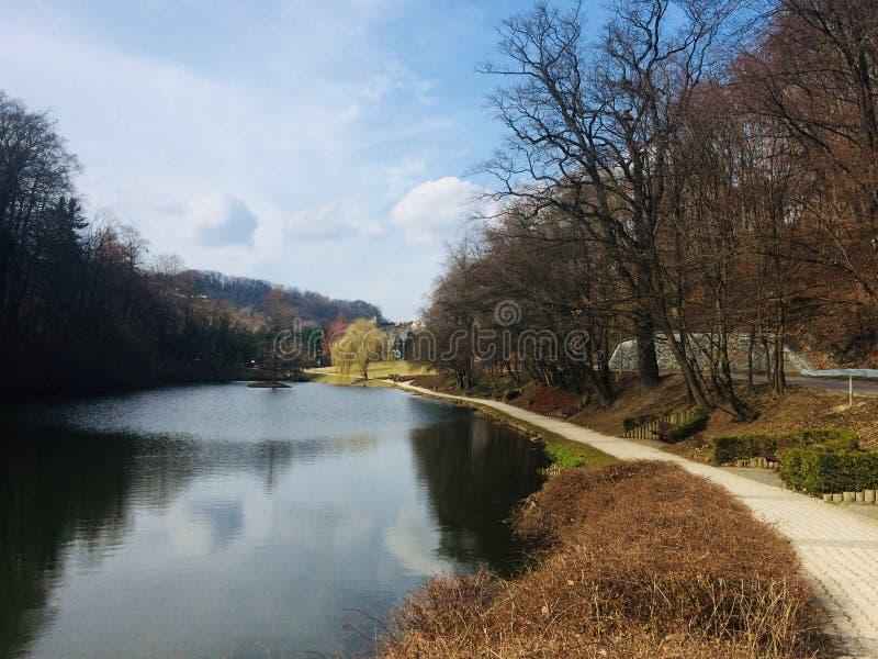 Beautiful & x22;Mestni park& x22; in Maribor, Slovenia. Sunny day in city park & x22;Mestni park& x22; in Maribor stock photography