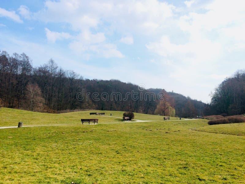 Beautiful & x22;Mestni park& x22; in Maribor, Slovenia. Sunny day in city park & x22;Mestni park& x22; in Maribor stock photo