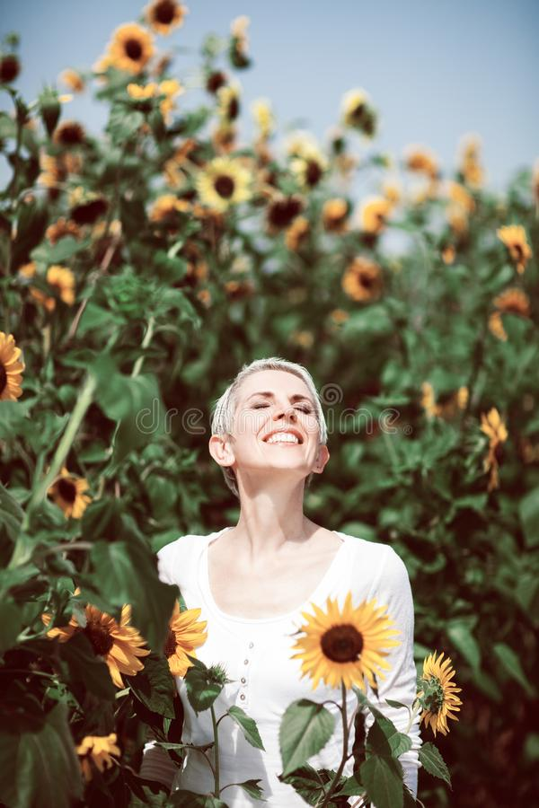 Beautiful middle age woman in a rural field scene outdoors with sunflowers stock image