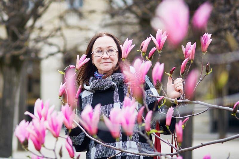 Beautiful middle aged admiring pink magnolia. Beautiful middle aged woman in Parisian park on a spring day admiring pink magnolia in full bloom stock photo