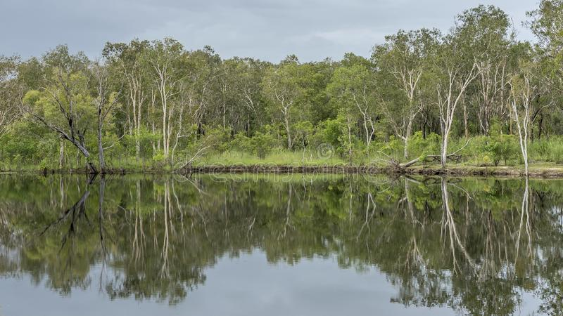 Beautiful mirror view of the Nourlangie Creek in the Kakadu National Park, Australia royalty free stock photos