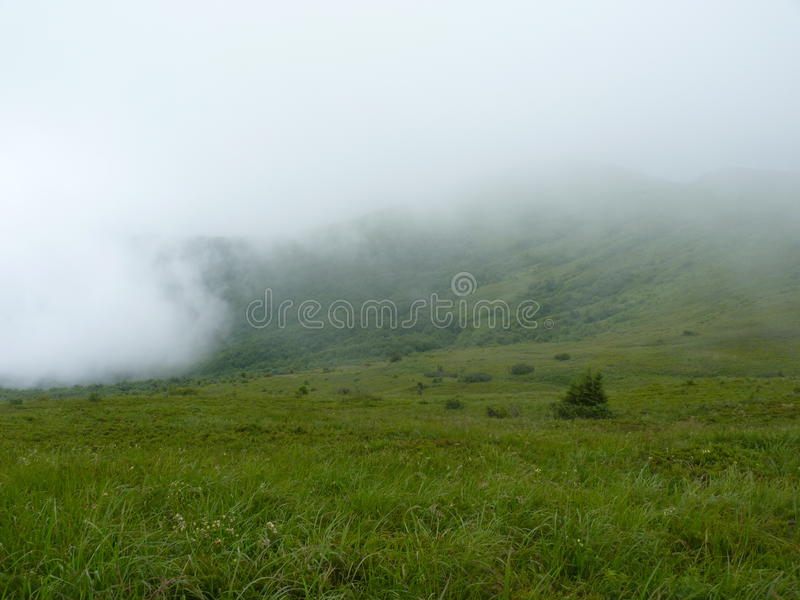 Beautiful misty mountains. Landscape after the rain. Foggy mountains forest and meadow. Beautiful landscape rainy clouds moody weather colors scenic background stock photo