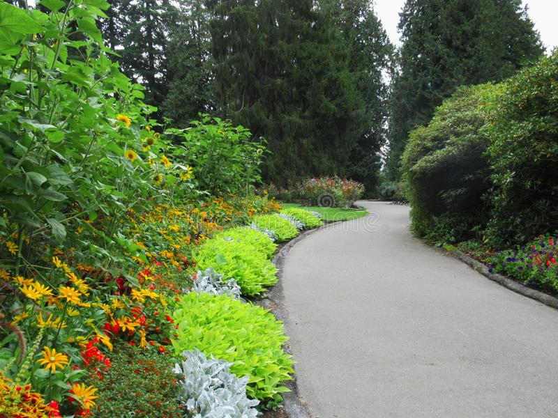Beautiful Colourful Mixed Flower Bed At Vancouver Stanley Park Perennial Garden In August 2019. Beautiful Mixed Flower Bed At Vancouver Stanley Park Perennial stock image