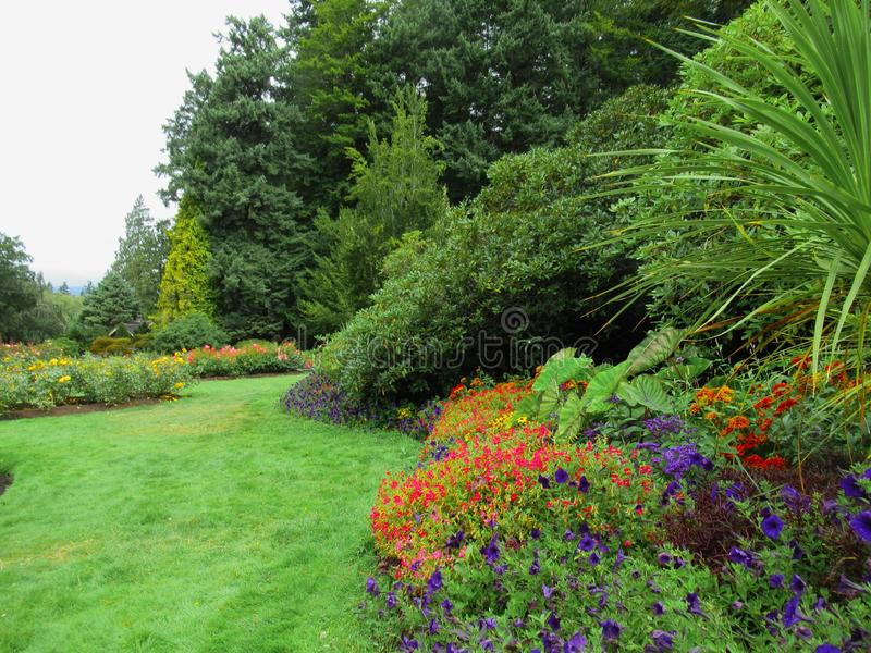 Beautiful Colourful Mixed Flower Bed At Vancouver Stanley Park Perennial Garden In August 2019. Beautiful Mixed Flower Bed At Vancouver Stanley Park Perennial royalty free stock photo