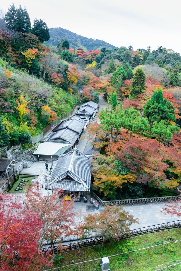 the beautiful Momiji autumn colorful maple  garden at Kiyomizu-Dera temple with Kyoto city background, Japan royalty free stock photography