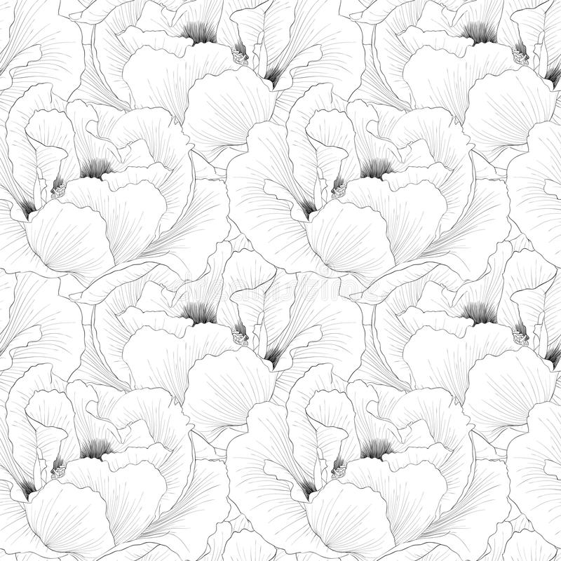 Free Beautiful Monochrome, Black And White Seamless Background With Flowers Plant Paeonia Arborea (Tree Peony). Royalty Free Stock Image - 46805116