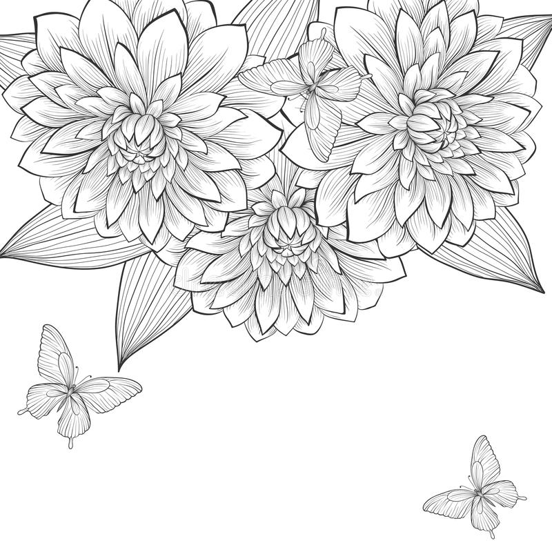 Beautiful monochrome black and white background with frame of dahlia flowers and butterflies. Hand-drawn contour lines and strokes. Perfect for background vector illustration