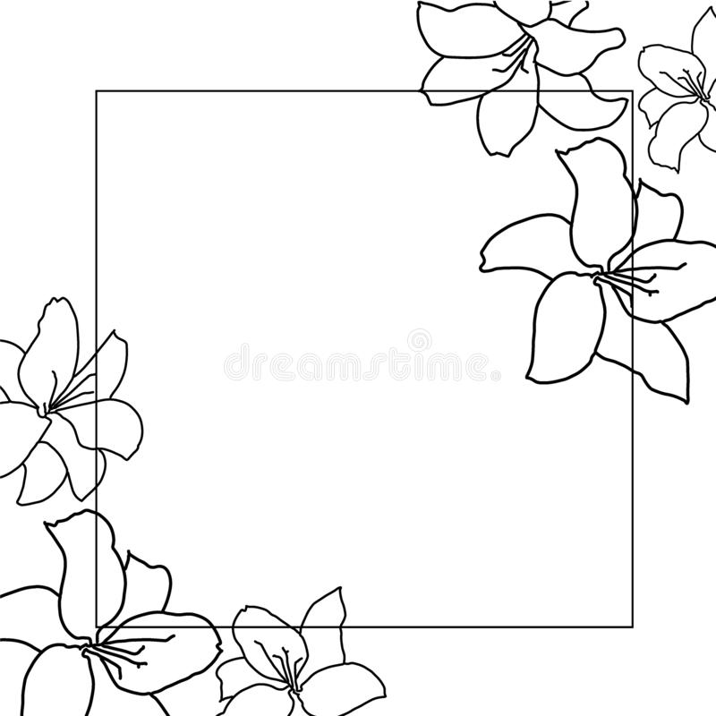 Beautiful monochrome black and white bouquet lily isolated on background. Hand-drawn. design greeting card and invitation of the royalty free illustration