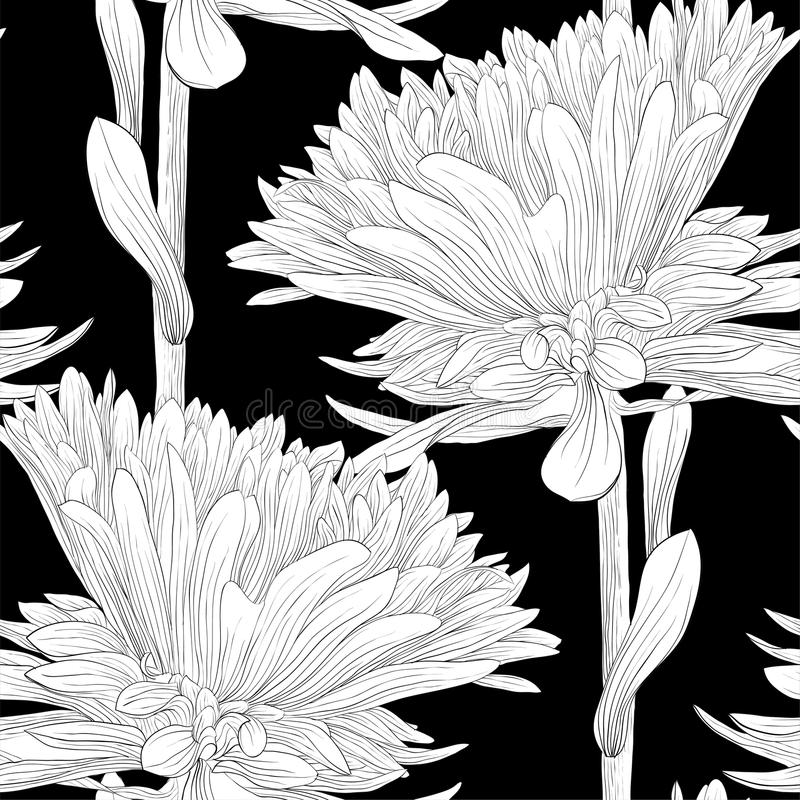 Beautiful monochrome, black and white seamless background with flowers aster. For greeting cards and invitations of wedding, birthday, mother's day and other stock illustration