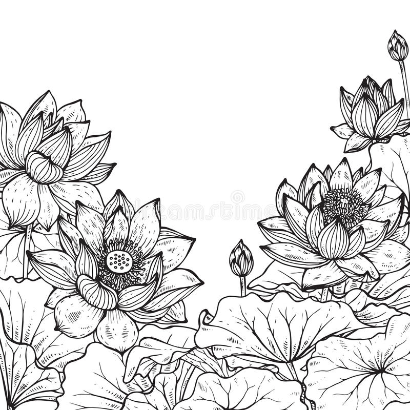 Beautiful monochrome vector floral frame with lotus vector illustration