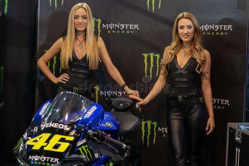 Beautiful Monster Energy girls pose with the motorcycle at Belgrade Car and Motor Show. Belgrade / Serbia - March 30, 2019: Beautiful Monster Energy girls pose royalty free stock photos