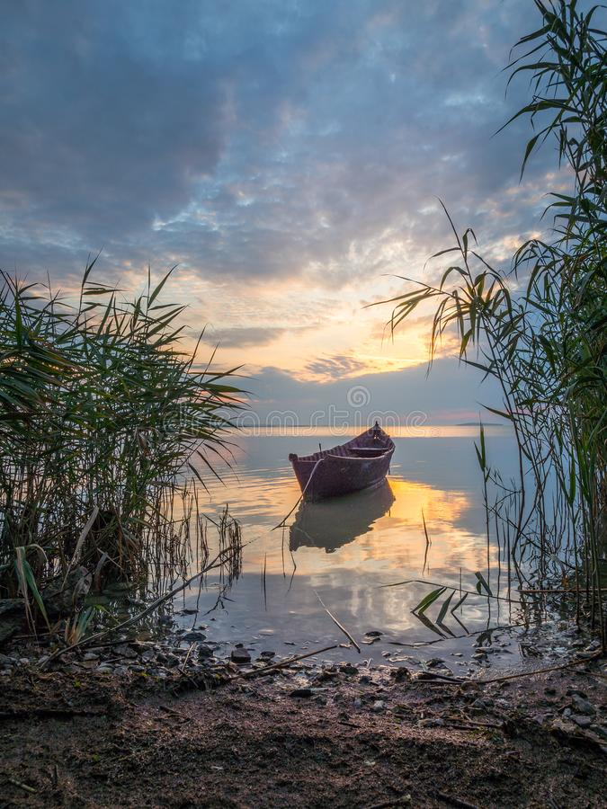 Beautiful morning landscape with a boat on the lake at the sunrise through the reed royalty free stock image