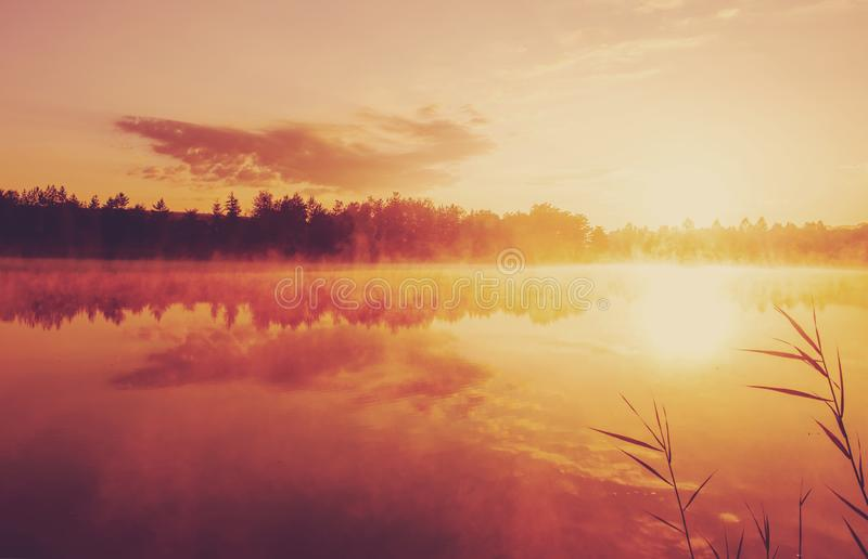 Beautiful morning landscape on a river with mist over the water royalty free stock photography