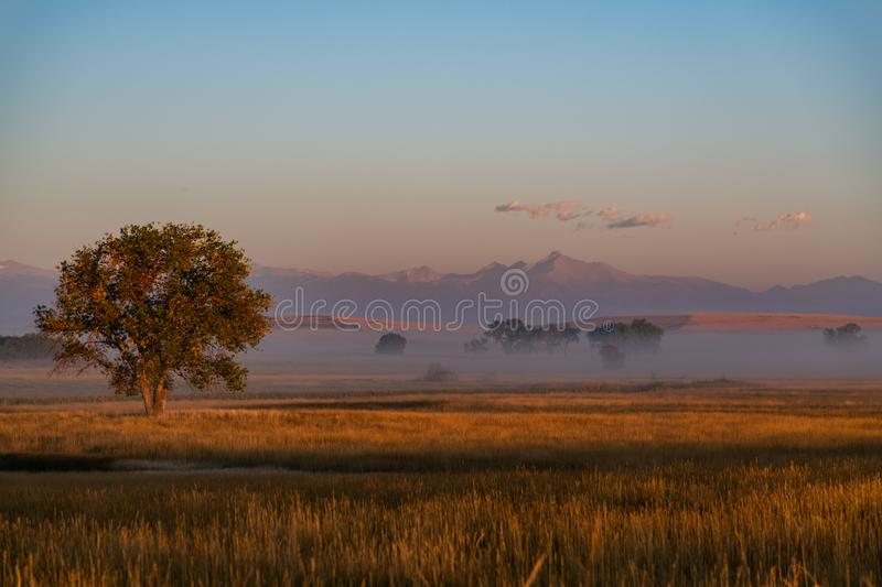 Beautiful Morning on the Plains of Colorado stock photo
