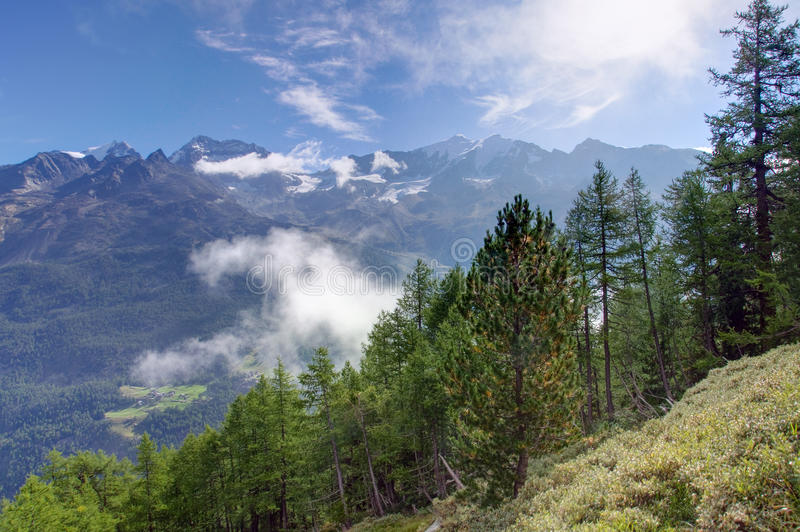 Beautiful morning in the Valais royalty free stock photo