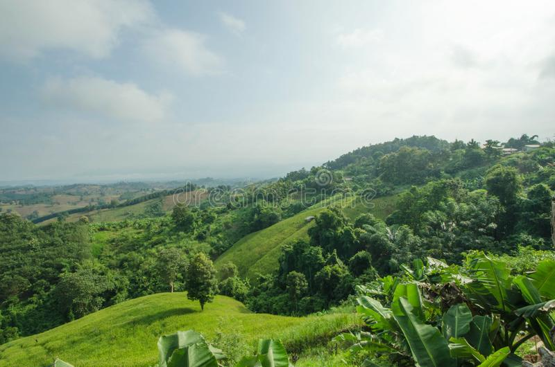 Beautiful mountain with green fields and forest in Thailand stock photo