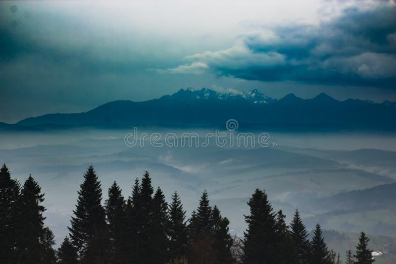 Beautiful mountain landscape with fog and pine trees in front.  royalty free stock photo