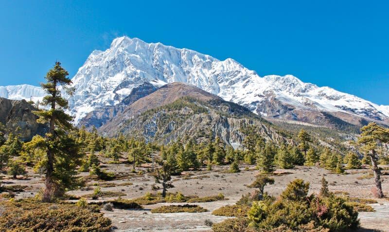 Beautiful mountain landscape in Nepal on Annapurna trek stock photo