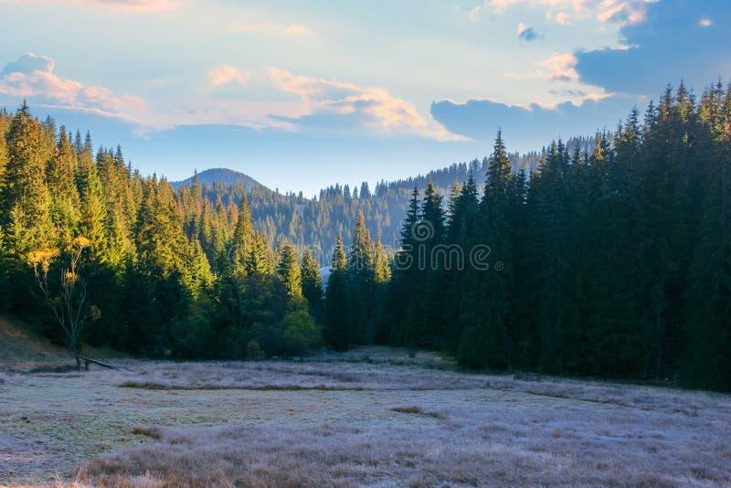 Beautiful mountain landscape at sunrise in autumn stock image