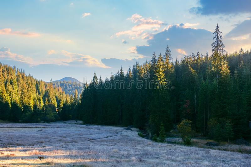 Beautiful mountain landscape at sunrise in autumn stock photos