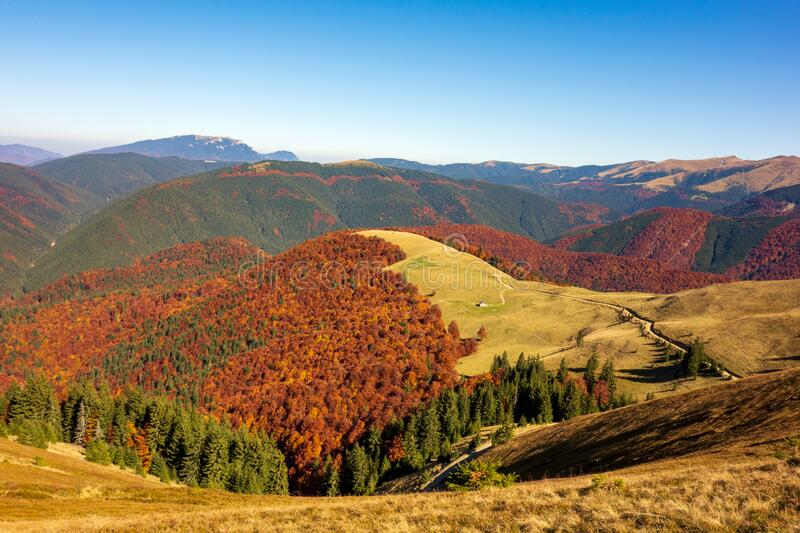 Beautiful mountain peaks rising above the colored trees royalty free stock photo