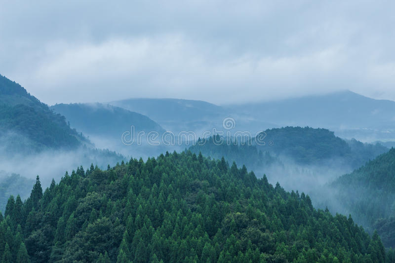 Beautiful Landscape Of Green Mountains In Madeira Island