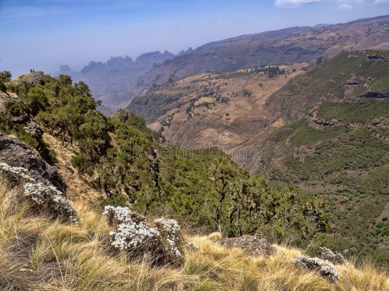 Beautiful mountain range in Simien Mountains National Park in Ethiopia royalty free stock photo