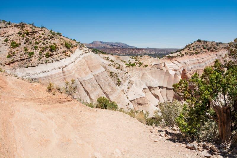 Beautiful mountain scenery in New Mexico. stock photo