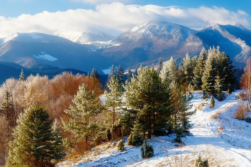 Beautiful mountain snowy landscape and forest path. Beautiful sunny day in the mountains. royalty free stock photography