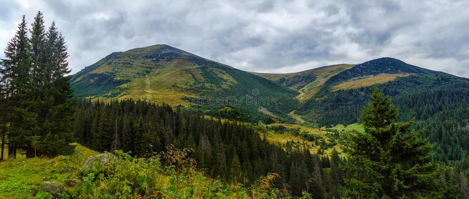 Beautiful mountain wide panorama with views of the high peak. With the clouds in Carpathian mountain range royalty free stock images