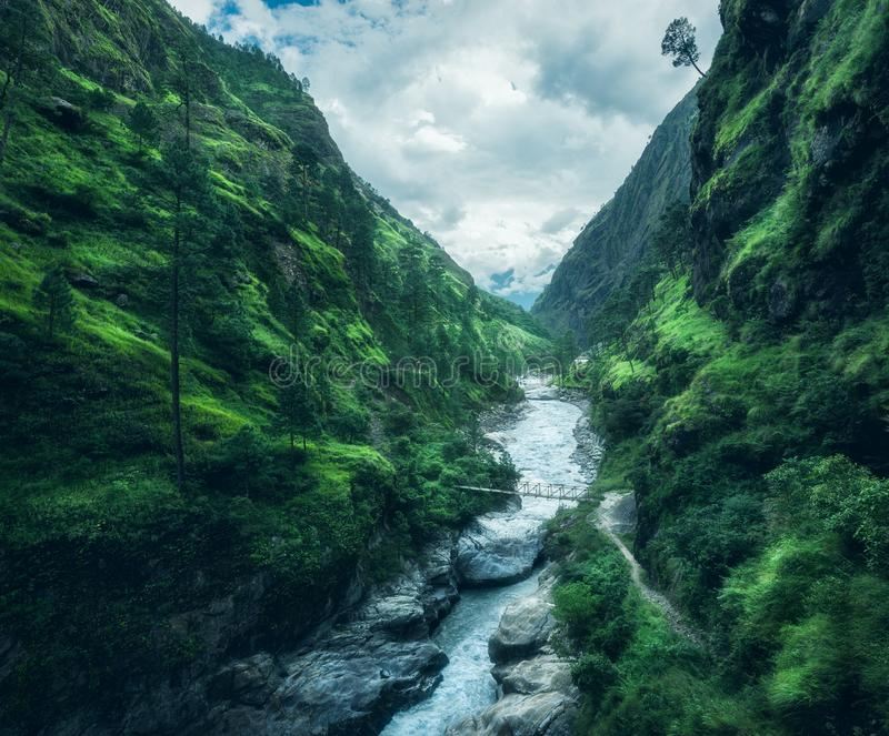 Beautiful mountains covered green grass. Moody landscape royalty free stock images