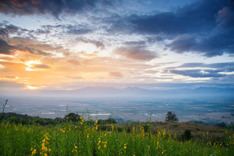 Beautiful mountains landscape with sunrise, cloudy, yellow flowers and field. royalty free stock photography