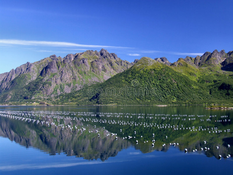 Beautiful mountains and oyster farm stock photography