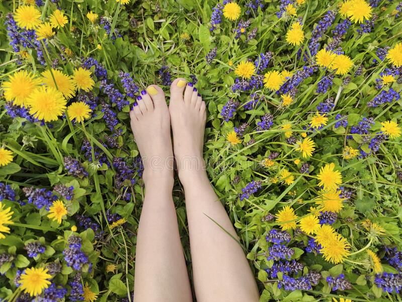 Beautiful multi-colored yellow, blue, purple pedicure on a female feet with different summer flowers stock images