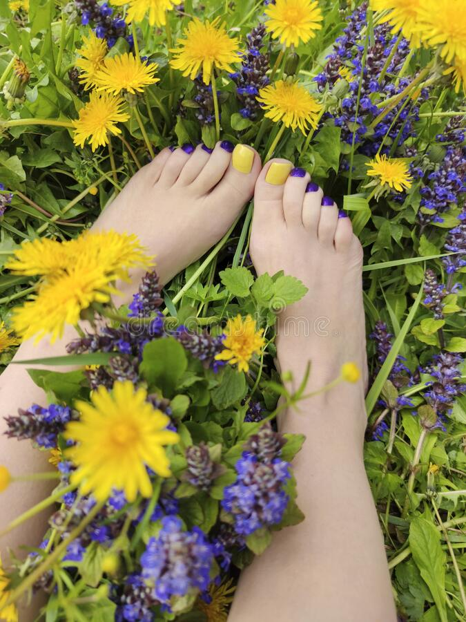 Beautiful multi-colored yellow, blue, purple pedicure on a female feet with different summer flowers stock photo