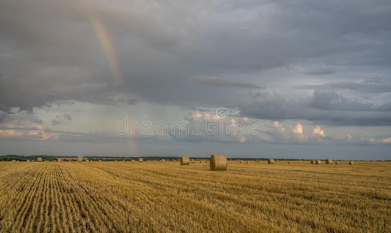 Beautiful multicolored rainbow over a sloping wheat field with large rolls of straw stock photo