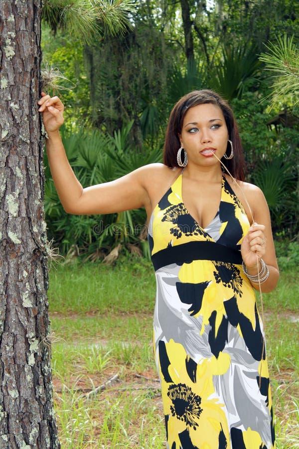 Download Beautiful Multiracial Woman Outdoors (7) Stock Image - Image: 20164453