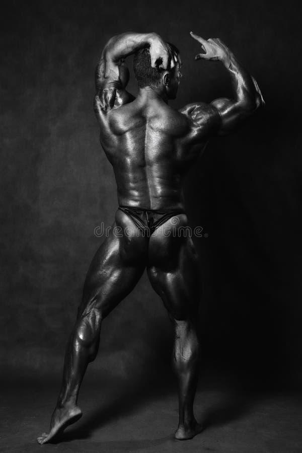 Beautiful muscular man`s back in the studio stock image